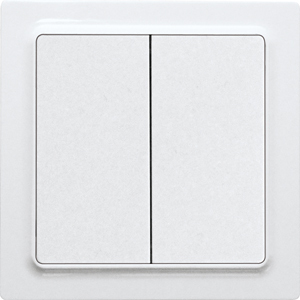 ELTAKO – Funktaster - Doppelwippe F4T55E-gw (glänzend weiß)